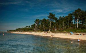 plaża Cisowo